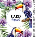 Toucan tropic card Vector watercolor. Exotic 50800549