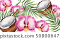 Orchid flowers and coconut Vector watercolor. 50800647