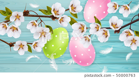 Cherry blossom and Easter colorful eggs Vector 50800763