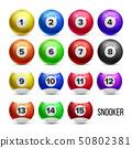 Snooker Billiard Balls With Numbers Set Vector 50802381