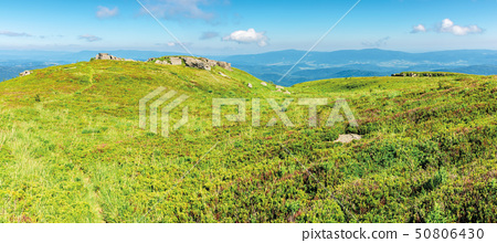 panoramic mountain landscape in summertime 50806430