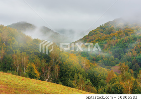 wonderful nature scenery in autumn 50806583
