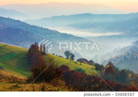 rural scenery on a foggy sunrise in mountain 50806587