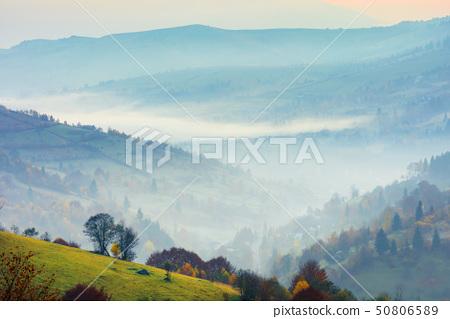 rural scenery on a foggy sunrise in mountain 50806589