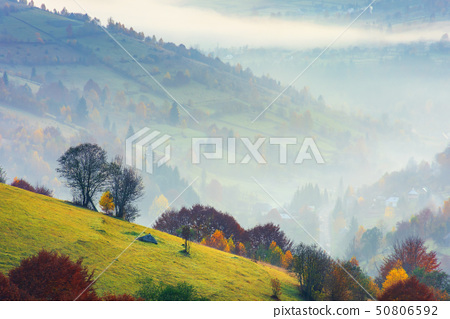 rural scenery on a foggy sunrise in mountain 50806592
