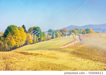 early autumn countryside scenery in fog 50806621