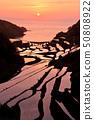 Sunset of the rice terrace of Hamanoura 50808922