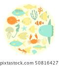 魚 50816427
