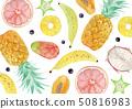 여름 배경 섬유 열대 과일 수채화 일러스트 50816983