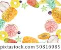 여름 배경 프레임 열대 과일 수채화 일러스트 50816985