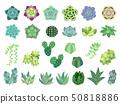 種植多汁植物的例證集合 50818886