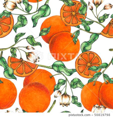 Orange Seamless Pattern hand painted in watercolor 50819798