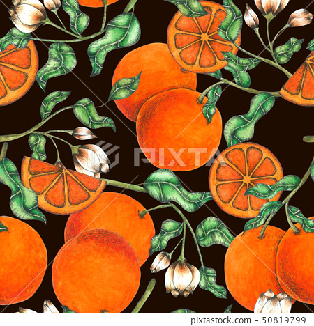 Orange Seamless Pattern hand painted in watercolor 50819799