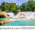 Agua Azul waterfalls, Chiapas, Mexico 50820604