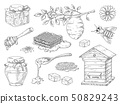 Hand drawn honey. Vintage bee honeycomb and honey jar sketch elements, doodle flowers and beeswax 50829243