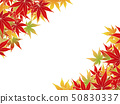 Autumn leaves 50830337