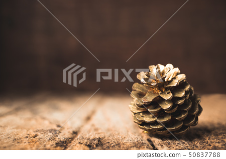 gold pine cone on grunge wood table and dark brown 50837788