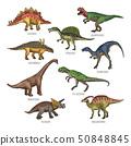Colored illustrations of different dinosaurs types. Tyrannosaurus, rex and stegosaurus 50848845