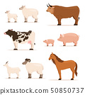 Animals on farm. Lamb, piglet, cow and sheep, goat. Vector illustrations set in cartoon style 50850737