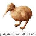 Low poly illustration with brown bird kiwi 50853323