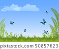 Summer natural meadow landscape background with green grass, plants, blue butterflies and sky. 50857623