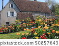 Flower bed in Amboise city 50857643