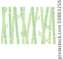 Bamboo forest background material 50863256