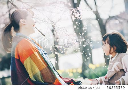 櫻花春天 50863579