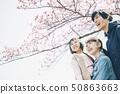 벚꽃 봄 친자 50863663