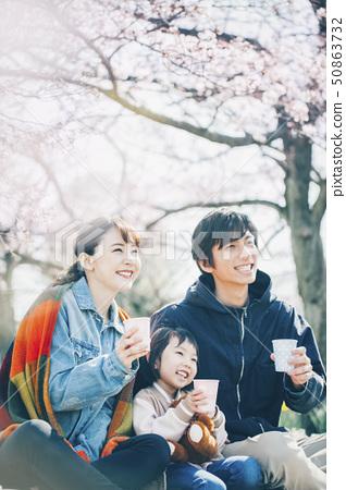 櫻花春天父母和孩子 50863732