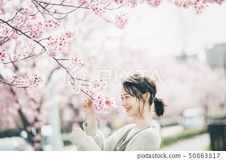 櫻花春天的女人 50863817