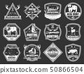Hunt wild animals and birds, hunter club badges 50866504
