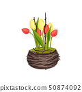 Yellow and pink tulips grow in the nest. Vector image on white background. 50874092
