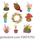 Set of different images of tulips. Vector image on white background. 50874702