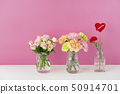 Mother's Day Carnation 50914701