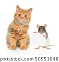 Cat and rat posing on white background 50951048