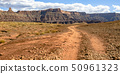 Trail leading to a grand canyon in Moab Utah 50961323