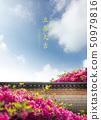 花朵 花 花卉 50979816