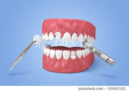 3D teeth 004 50980102