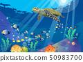 seaturtle and colrful fish at underwater 50983700