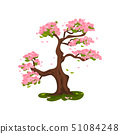 Sakura blooming in the meadow. Vector illustration on white background. 51084248