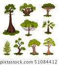 Set of tree illustrations. Spruce, pine, palm, oak. 51084412