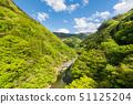 Fresh green Ani gorge 51125204