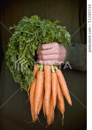 A man holding a bunch of carrots 51280318