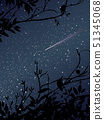 Stars on the sky at night with meteor and tree 51345068