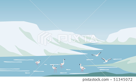 Flamingo hunting and relaxing in the lake located 51345072
