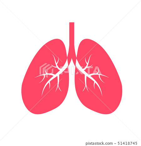 Human lung icon design, flat style.  51418745