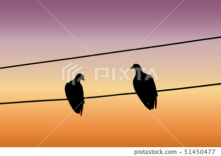 Silhouettes of two pigeons sitting on a wire 51450477