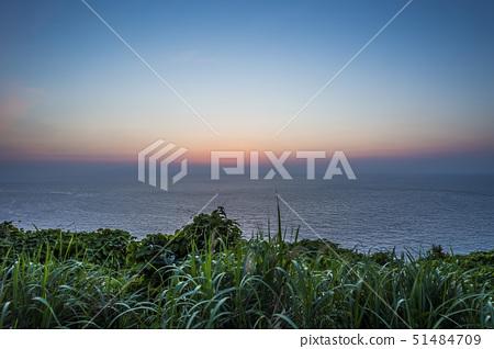 야쿠시마,가고시마현,일본 51484709