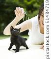 USA,Utah,Orem,Woman playing with kitten 51484719